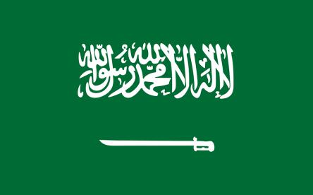 Aprofundir en la situació dels drets humans a l'Aràbia Saudita